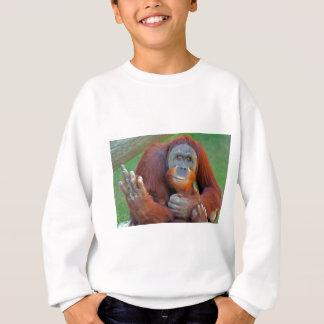 Orangután que mueve de un tirón el pájaro playera