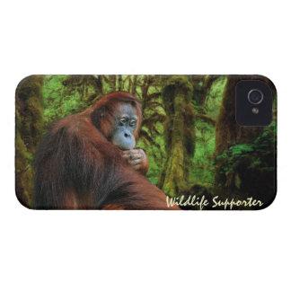 Orangutan & Rainforest Wildlife Blackberry Case