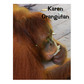 Orangutan Rescue and Release to Borneo Rainforest Postcard