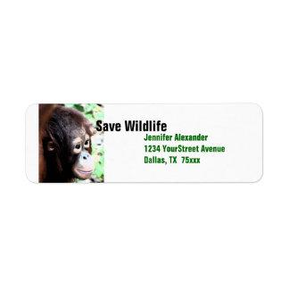 Orangutan Save Wildlife Label