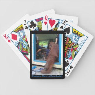 Orangutan Siswe watches IMAX Movie Playing Cards
