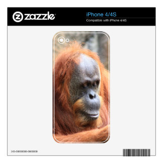 Orangutan Skin For The iPhone 4S