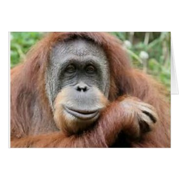 malhcreations Orangutan Smile Card