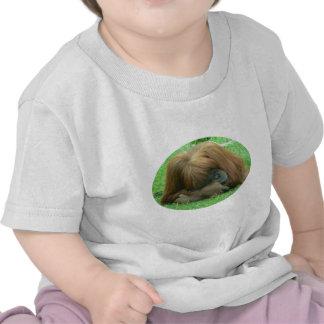 Orangutan Snoozing Baby Shirt