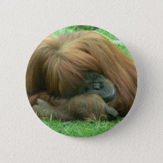 Orangutan Snoozing Button