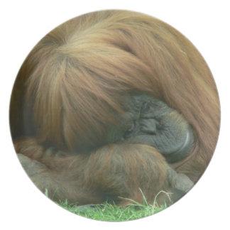 Orangutan Snoozing Plate
