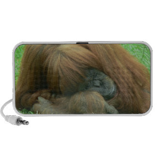 Orangutan Snoozing Speakers