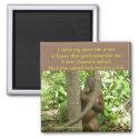 Orangutan Tribute magnet