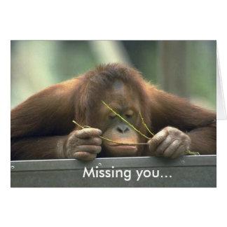 Orangután triste que le falta tarjeta pequeña