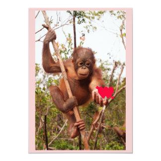 Orangutan Valentine Cards