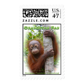 Orangutan Wildlife Fan medium size Postage