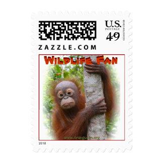 Orangutan Wildlife Fan Postage