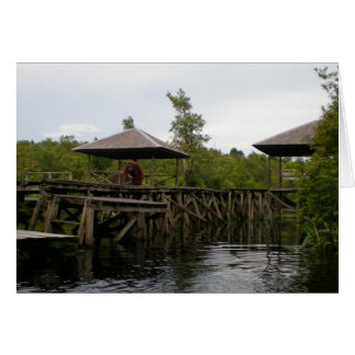Orangutan Wildlife Welcoming Committee, Indonesia Card