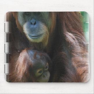 Orangutan with Baby  Mouse Pad