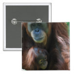 Orangutan with Baby  Pin