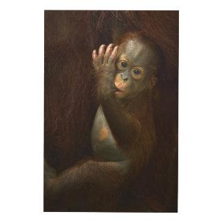 Orangutan Wood Canvases