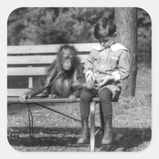 Orangután y muchacho - parque zoológico nacional pegatina cuadrada