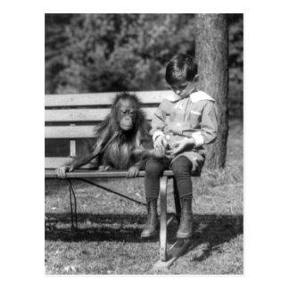 Orangután y muchacho - parque zoológico nacional tarjeta postal