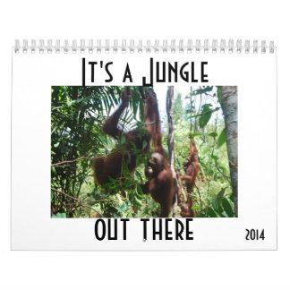 Orangutanes animales lindos de la fotografía calendarios