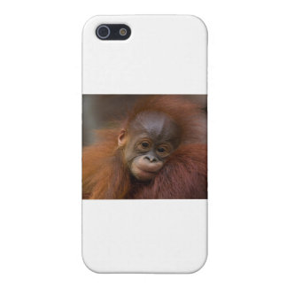 Orangutang baby case for iPhone SE/5/5s