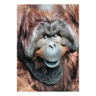 ORANGUTANS LARGE BUSINESS CARDS (Pack OF 100)