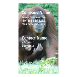 Orangutans Business Cards