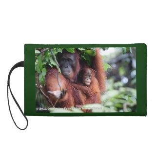 Orangutans in Borneo Wristlet