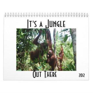 Orangutans in Indonesia Calendar