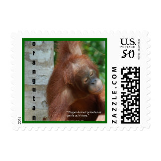 Orangutans  My Favorite Things Postage