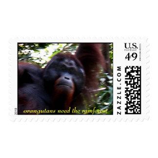orangutans need the rainforest stamps
