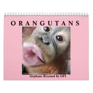 Orangutans Rescued Orphans Calendar
