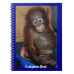 Orangutans Rock Spiral Notebook