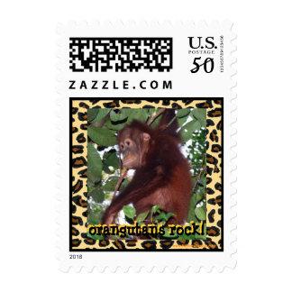 Orangutans Rock the Jungle Postage