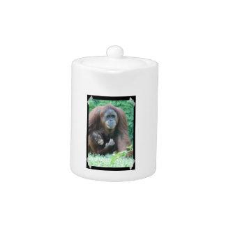 Orangutans Teapot