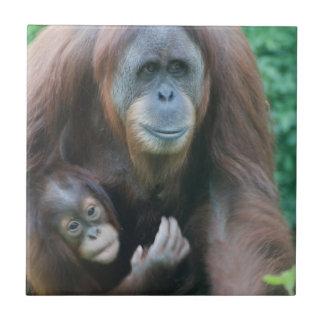 Orangutans Tile