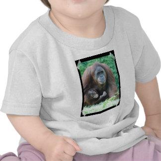 Orangutans Shirts