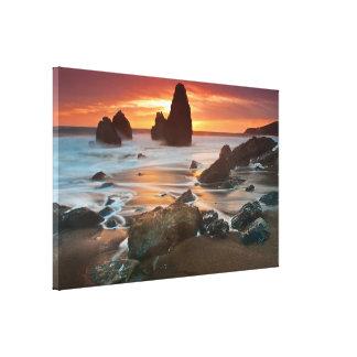Orangy Goodness, Rodeo Beach Canvas Print