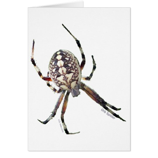 Orb Spider Card