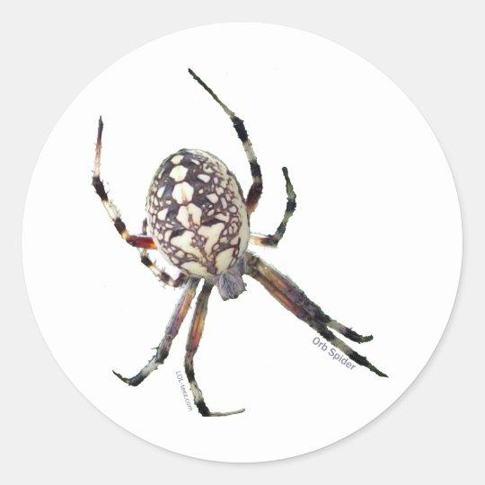 Orb Spider Classic Round Sticker