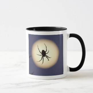 Orb spider on web with full moon, in south mug