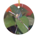Orb Spider Ornament