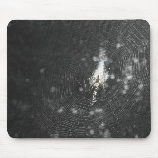 Orb Weaver Clutching Web Mouse Pad