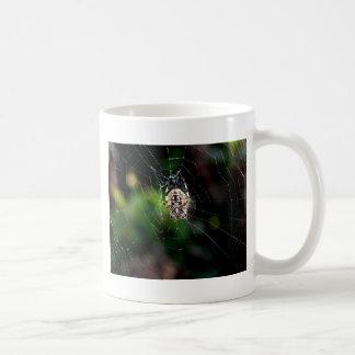 Orb Weaving Garden Spider Classic White Coffee Mug
