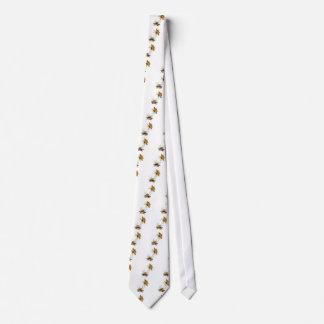 Orbe-Tejedor espinoso Corbata