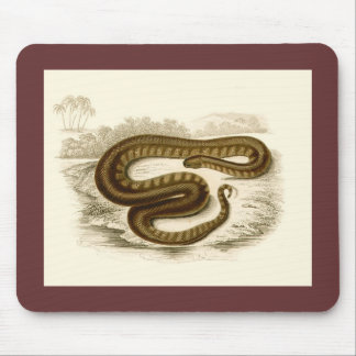 Orbigny - Elephant-trunk Snake Mouse Pad