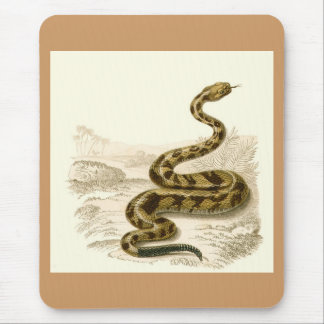 Orbigny - Rattlesnake - Crotalus durissus Mouse Pad