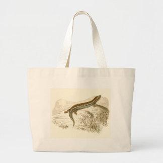 Orbigny - Thick-Tailed Skink - Gongylus occelatus Jumbo Tote Bag
