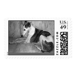 Orbit - Postage Stamp