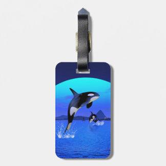 Orca 1 bag tag
