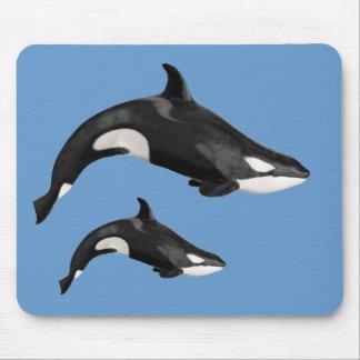Orca aislada alfombrillas de ratón